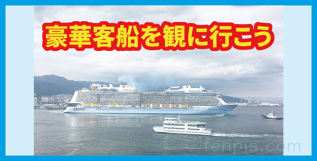 豪華客船を観に行こう